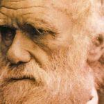 Photo of darwin